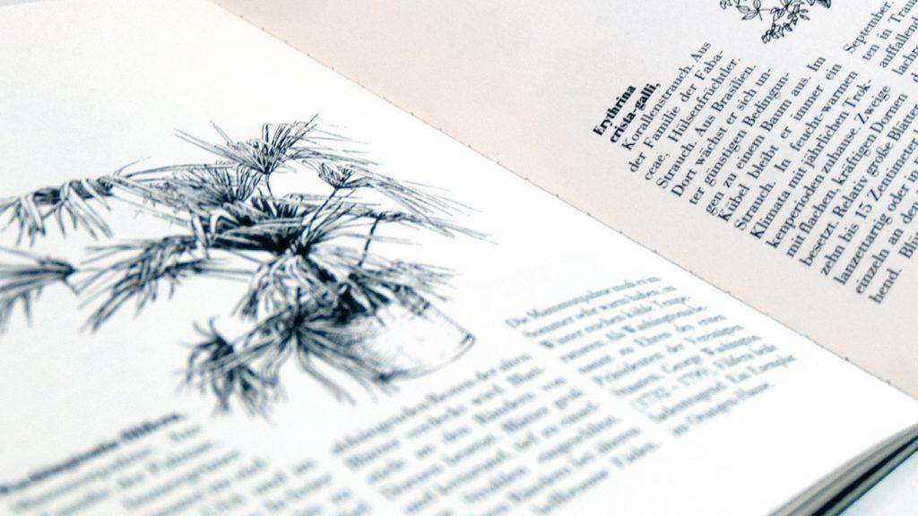 Projektbegleitender Katalog zur Ausstellung »Mehr Licht in der Orangerie«
